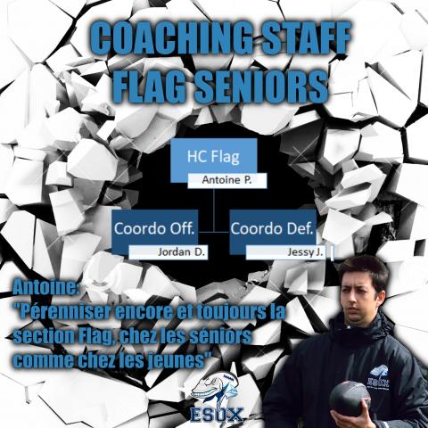 CoachingFlag