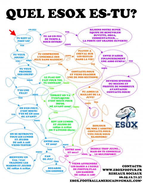 UML-ESOX