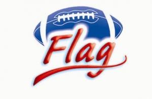 icone_fffa_flag