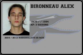 flag-bironneau_alex