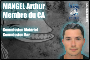 BUREAU-MANGEL Arthur