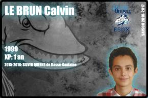 CHEER-LE BRUN Calvin