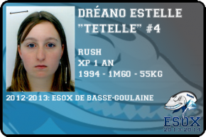 flag-dreano-estelle