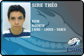 flag-sire-theo