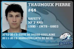 flag-thaumoux-pierre